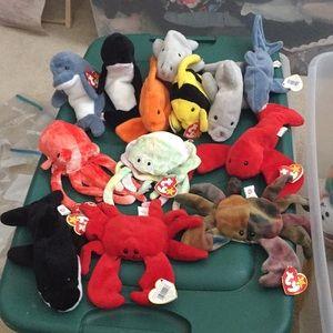 Ocean 13 Beanie Babies